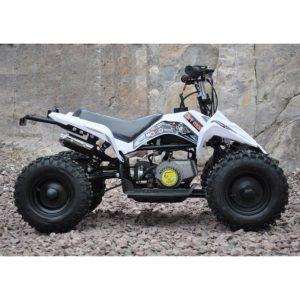 Mini moto atv 49cc 2T aro 6 Cuadrimoto Blanco